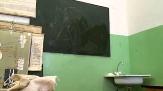 видео Регуляция желудочной секреции