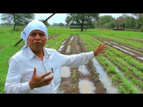 Grid Locking & Water Conservation- Natural farming by Subhash  Sharma