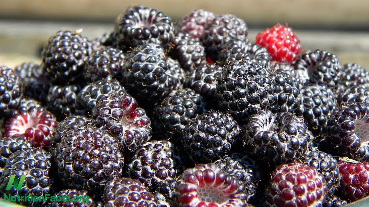 Black Raspberry Supplements Put to the Test