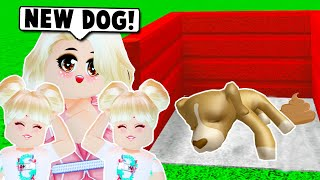 WE ADOPTED A HOMELESS FAMILY DOG ON BLOXBURG! (Roblox)