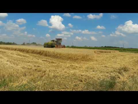 «Клаас» строит завод на Кубанииз YouTube · Длительность: 3 мин22 с