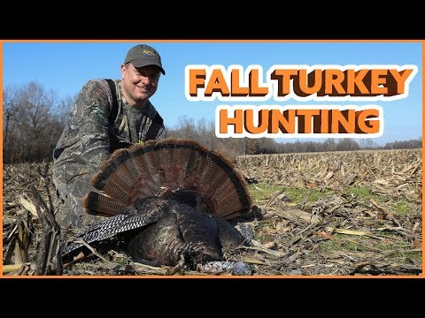 Fall Turkey Hunting In Kentucky