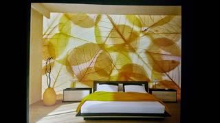 wallpaper in ghaziabad,wallpaper in delhi ncr,wallpaper in noida
