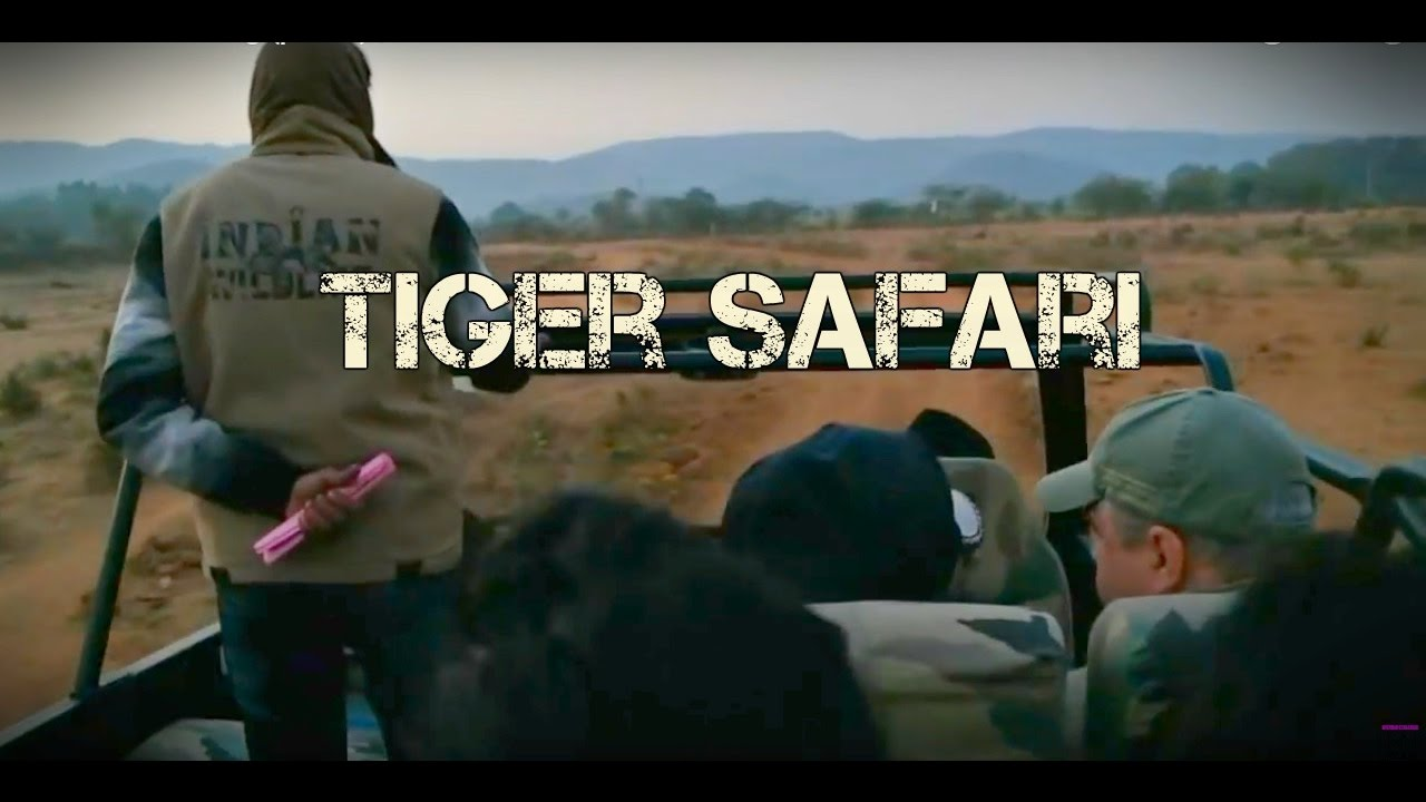 INCREDIBLE India Vlog (part 2) | TIGER SAFARI in RANTHRAMBHORE