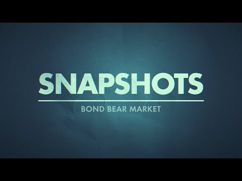 Bond Bear Market | Jawad Mian Real Vision Video