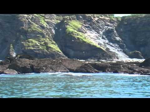 Devon and North Cornwall