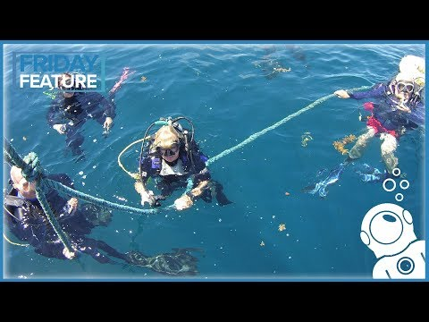 What Gear Should A Travelling Diver Bring?