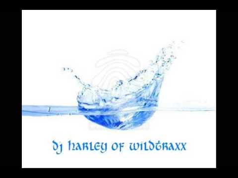 love story (dance mix)  - taylor swift ft. wilddeejay