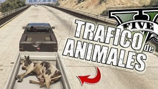 GTA V | TRAFICANDO ANIMALES EN GTA 5 (Grand Theft Auto 5)