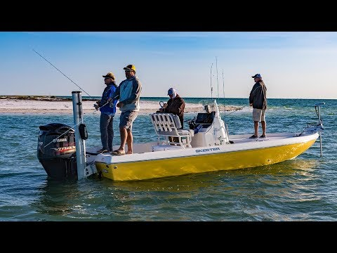 New Port Richey Fishing The Flats For Redfish And Sharks