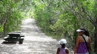 Bosque Seco de Guanica / Niños / 2013
