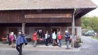 Odenwald-Wanderung , Hammelbach