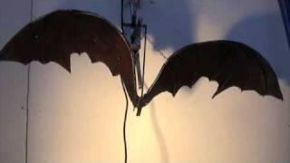 BAT.mov