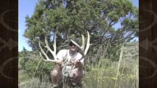 Giant Mule Deer Shed Antlers Picked Up - MossBack