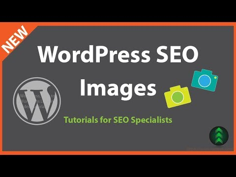 WordPress SEO for SEO Specialists - Images - 동영상