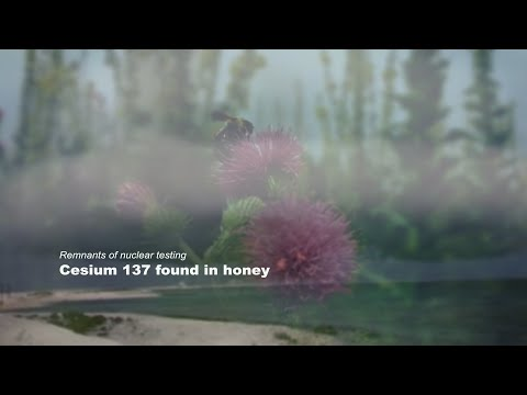 Remnants of nuclear testing: Cesium 137 found in honey