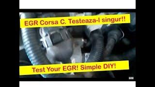 EGR Corsa C -- How to test the EGR on a Corsa C 1.2L engine