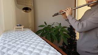 플룻초보자의 [가톨릭성가] 전곡 연주 도전기-{191.…