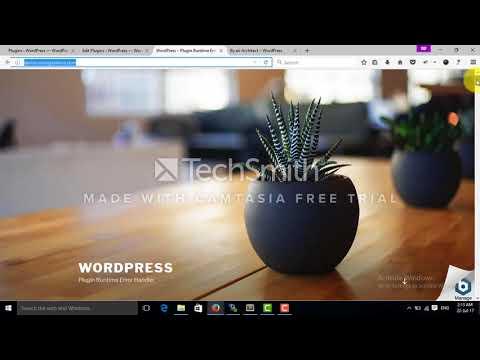 WordPress Plugin Performance - Error Handler - Website Never Stops Running