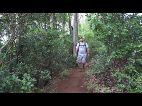 manana-ridge-trail