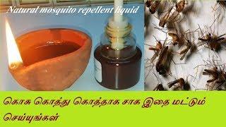 கொசு கொத்து கொத்தாக சாக இதை மட்டும்/Mosquito Killer Refill homemade Liquid without side effect