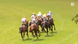 Vidéo de la course PMU PRIX BON MOT
