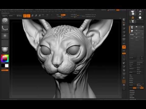 Sphynx Cat Bust Zbrush Sculpt