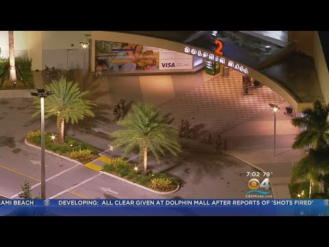 Reports Of Shots Fired Leads To Chaos And Confusion At Dolphin Mall
