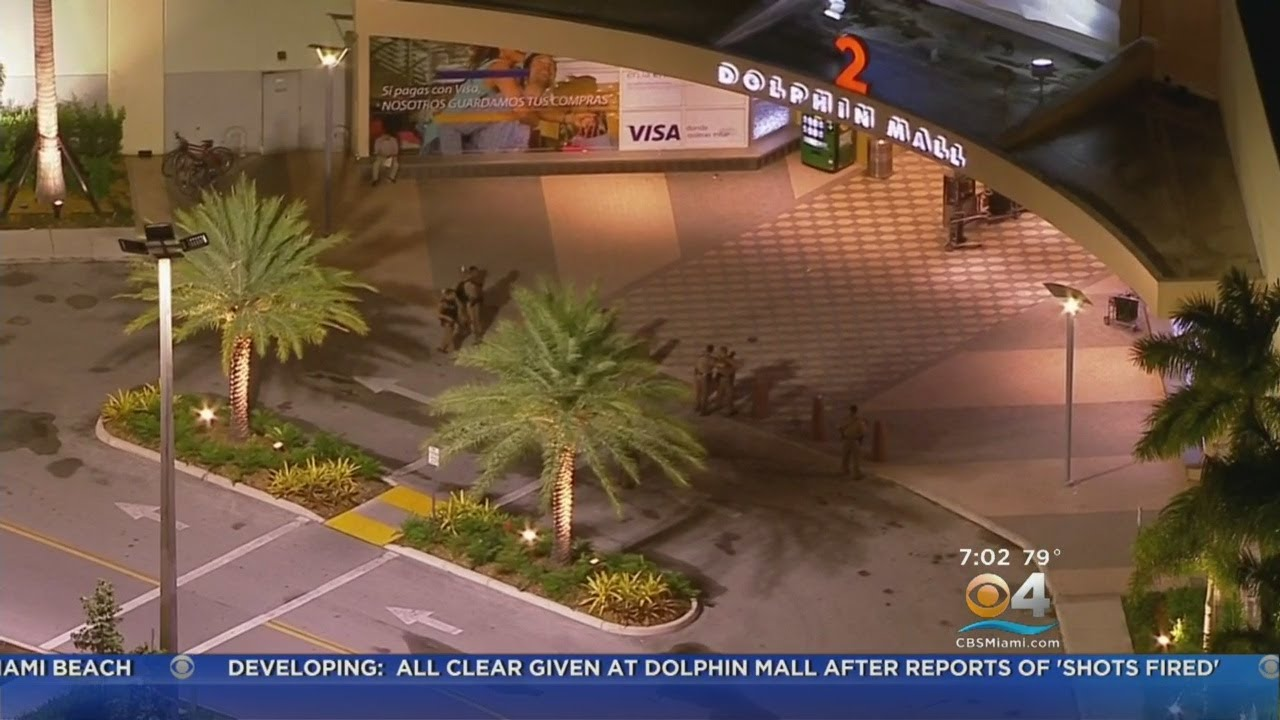 Police Respond to Chaotic Scene at Dolphin Mall