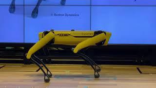 """Boston Dynamics """"SPOT"""" demo by """" Tokyo Metropolitan"""" Government"""
