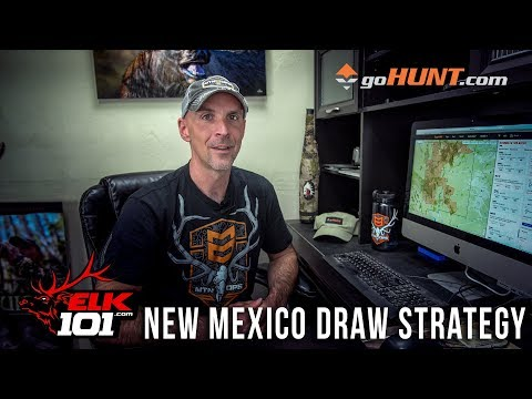 What Are Your Chances Of Hunting Elk In New Mexico?
