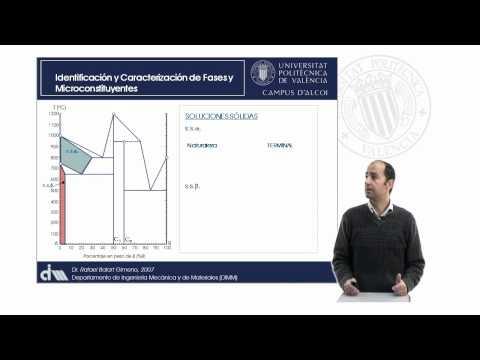 Análisis de Diagramas de Equilibrio. Identificación de Fases y Componentes