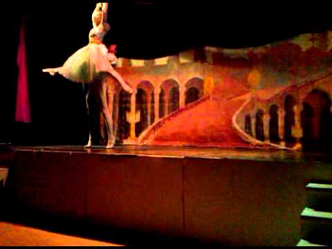 Ballet Long Island - Twelve Dancing Princesses