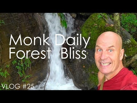 VLOG #25: Monk Daily + Forest Bliss :-)