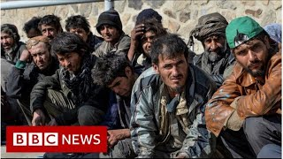 Afghanistan is 'becoming a significant producer' of Crystal Meth  - BBC News