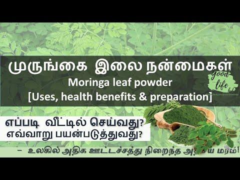 Moringa / Drumstick Leaf Powder Uses, Health Benefits And Preparation In Tamil. முருங்கை இலை பொடி
