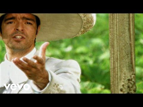 Pablo Montero - Gata Salvaje