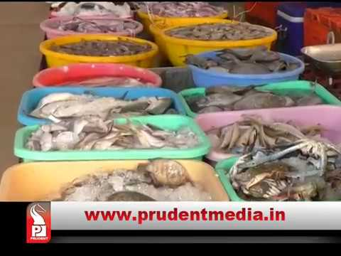 CONSIDER 4MG FORMALIN IN PER KG FISH AS PERMISSIBLE: HC TO FDA