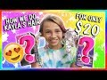 How we dye kayla s hair for 20 we are the davises mp3