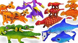 Dino Mecard Double figure 11 set appeared with giant dinosaur and tiny dinosaur! - DuDuPopTOY