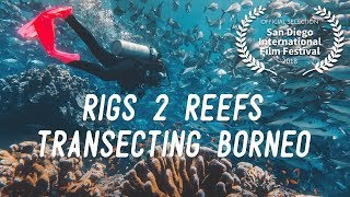 Rigs 2 Reefs: Transecting Borneo thumbnail