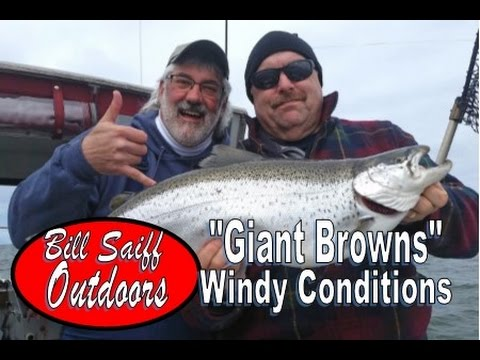 Big Browns In Windy Conditions! -Lake Ontario Fishing Charters