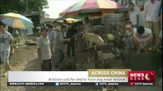 protest against yulin dog meat festival