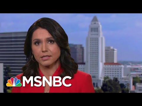 Tulsi Gabbard Calls Assange's Arrest A Blow To Transparency And Free Press | Hardball | MSNBC