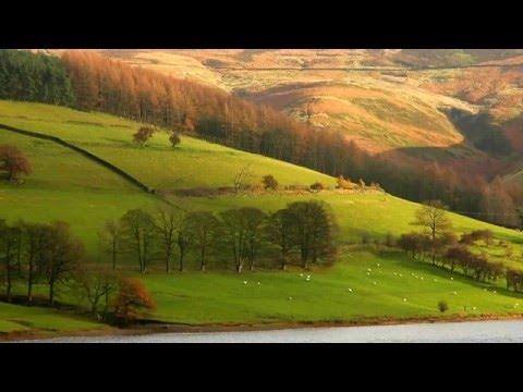 Pyotr Tchaikovsky: Andante cantabile (arr. cello) from String Quartet No. 1, Op. 11
