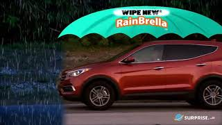 Rust-Oleum Wipe New RainBrella