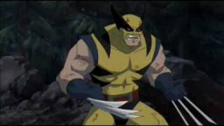 wolverine vs hulk director s cut bloody version