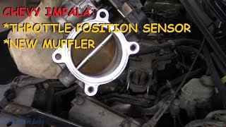 Chevrolet Impala: TPS and Muffler