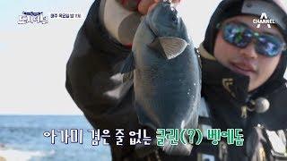 [도시어부 선공개] 마닷, 긴꼬리벵에돔 신대륙 발견! 벵에돔 두 마리로 선두