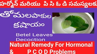 తమలపాకుల కషాయం||betel leaves decoction  preparation method